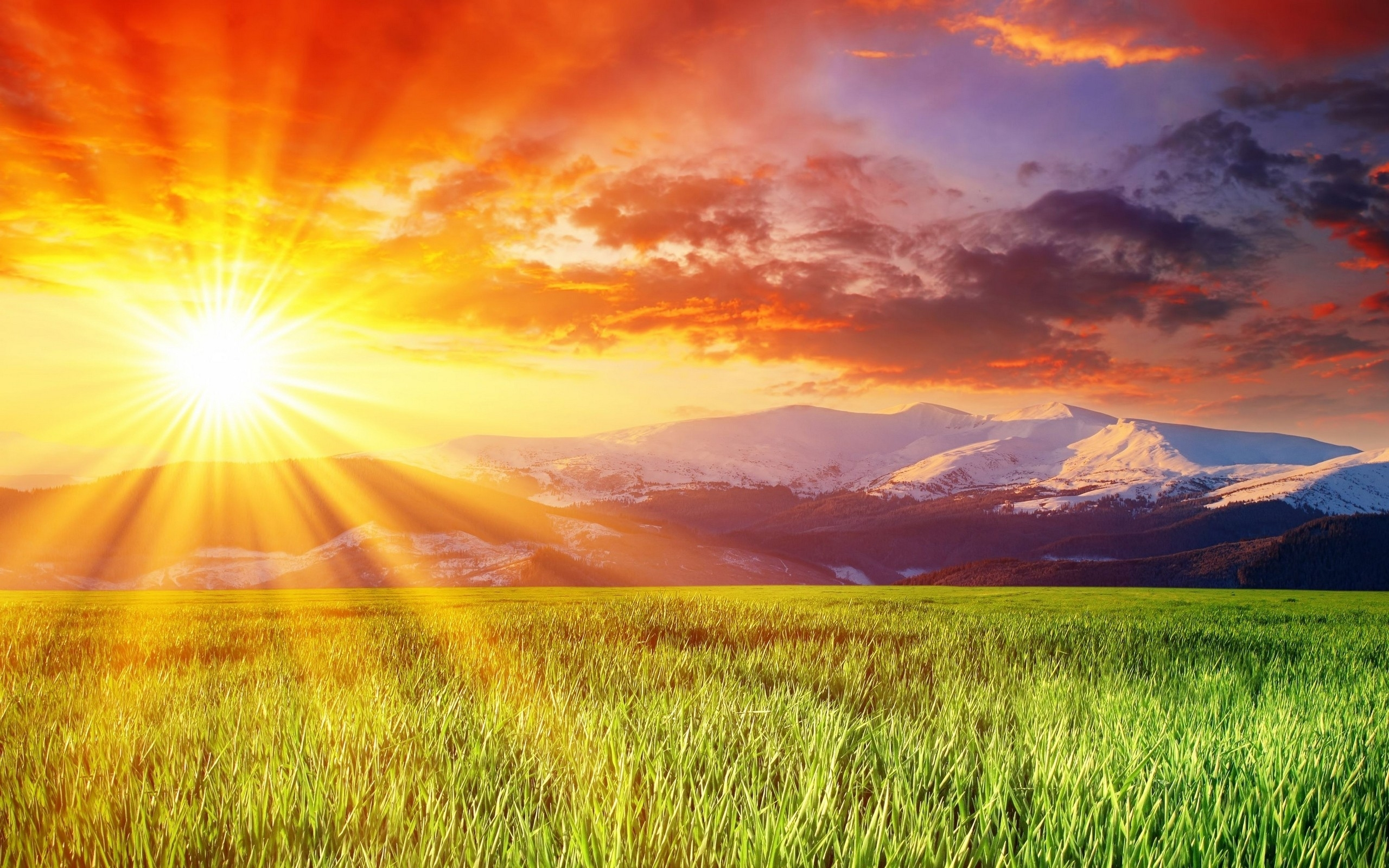 luz solar